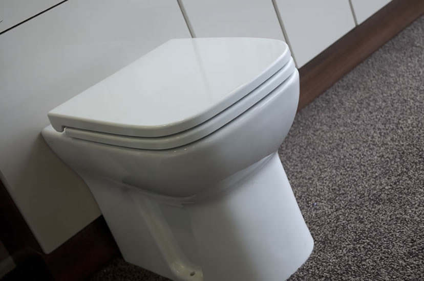 Modern Back To Wall Pan And Seat